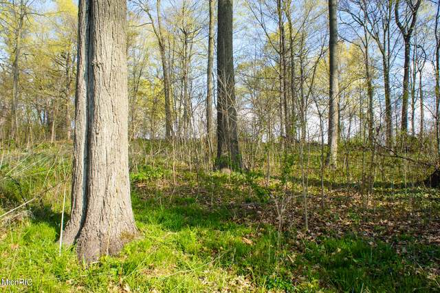 VL Forest Hall Avenue, Cassopolis, MI 49031 (MLS #21013562) :: Your Kzoo Agents