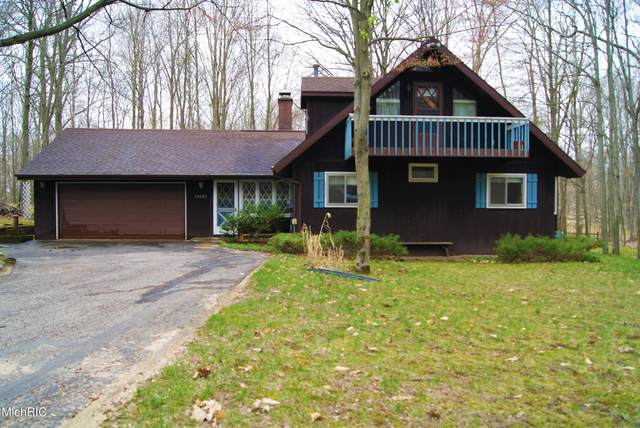 10121 Mountain View Trail, Canadian Lakes, MI 49346 (MLS #21013844) :: Your Kzoo Agents
