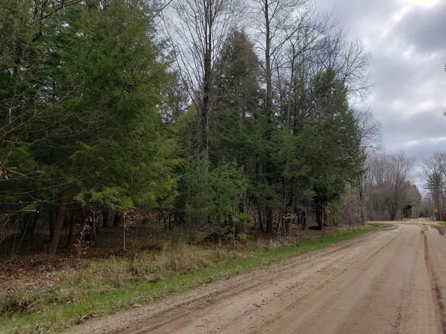 2100-Parcel 'E' W Victory Drive, Free Soil, MI 49411 (MLS #21014028) :: Deb Stevenson Group - Greenridge Realty