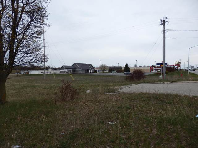 1780 Us 31 South, Manistee, MI 49660 (MLS #21014093) :: Your Kzoo Agents