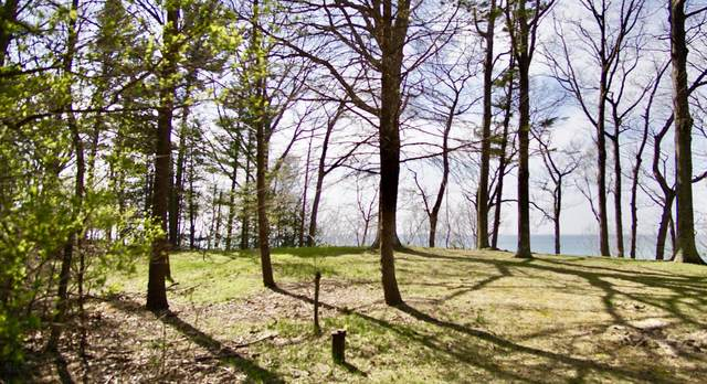 Waterfront N Ridge Road, Mears, MI 49436 (MLS #21014312) :: Your Kzoo Agents