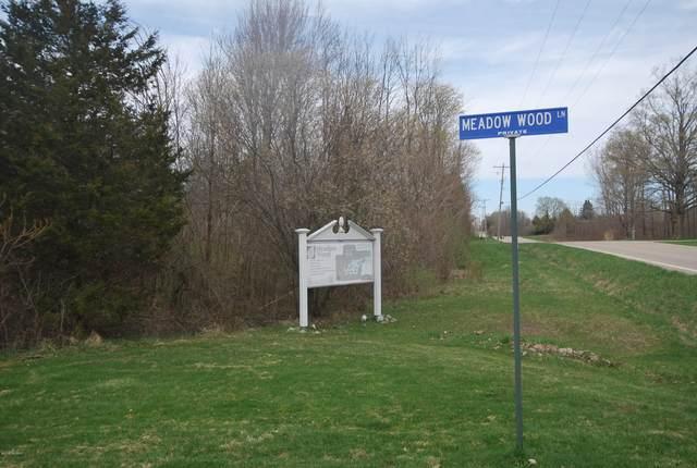 Meadow Wood Lane, Fennville, MI 49408 (MLS #21014322) :: Keller Williams Realty | Kalamazoo Market Center