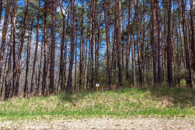 8196 Pine Tree Trail #131, Canadian Lakes, MI 49346 (MLS #21014785) :: Your Kzoo Agents