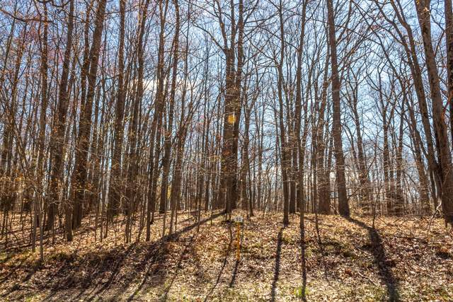10034 Sante Fe Trail #90, Canadian Lakes, MI 49346 (MLS #21014786) :: Your Kzoo Agents