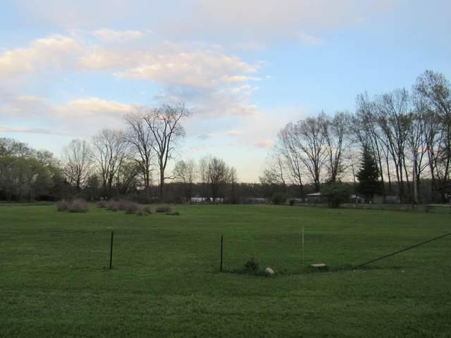 Farrand Road, Colon, MI 49040 (MLS #21015075) :: BlueWest Properties
