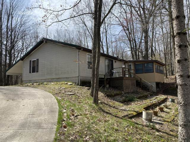 110 Section Line Road, Leroy, MI 49655 (MLS #21015104) :: Your Kzoo Agents