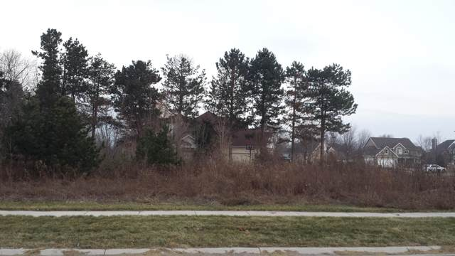 2453 Perry Drive Lot 66, Stevensville, MI 49127 (MLS #21015344) :: Your Kzoo Agents