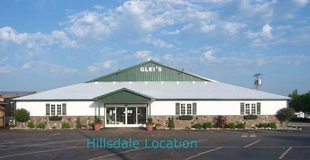 3500 Milnes Road, Hillsdale, MI 49242 (MLS #21015626) :: Keller Williams Realty | Kalamazoo Market Center