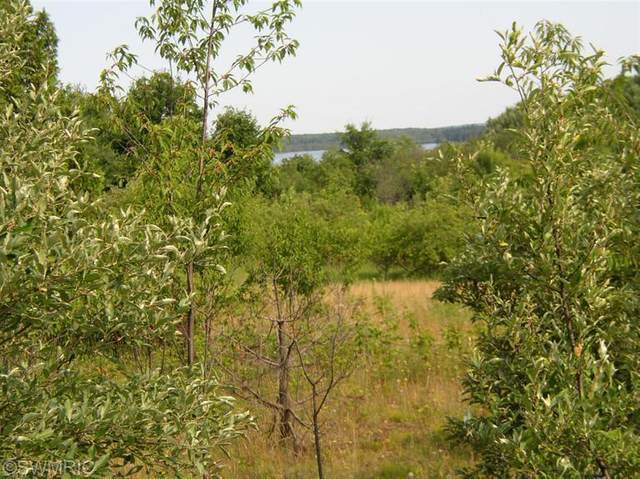 000 Potter Rd, Bear Lake, MI 49614 (MLS #21016036) :: Deb Stevenson Group - Greenridge Realty