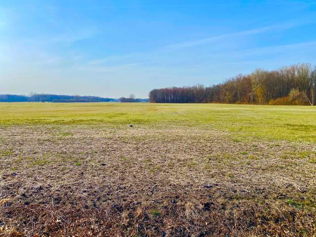 501 W Erie Road, Temperance, MI 48182 (MLS #21016175) :: Your Kzoo Agents