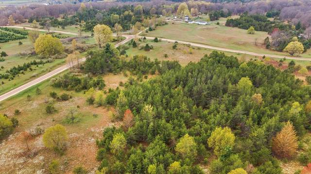 V/L E 3 Mile Rd Parcel E, Luther, MI 49656 (MLS #21016210) :: JH Realty Partners