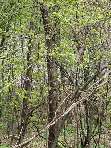 Forest Shores, Cassopolis, MI 49031 (MLS #21016609) :: JH Realty Partners