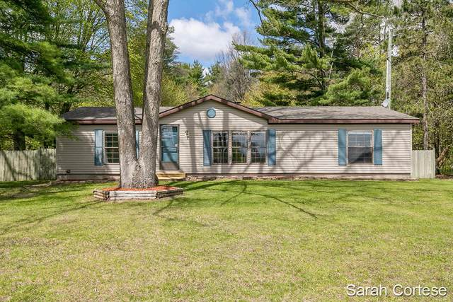 10421 Maple Hill Road, Howard City, MI 49329 (MLS #21016867) :: Keller Williams Realty | Kalamazoo Market Center