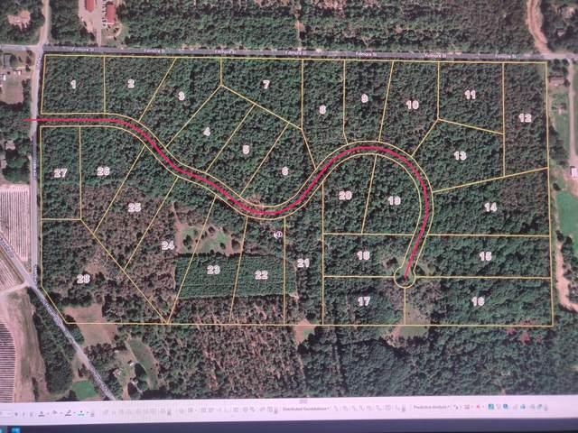 16558 Haven Woods Court, West Olive, MI 49460 (MLS #21017040) :: Keller Williams Realty | Kalamazoo Market Center