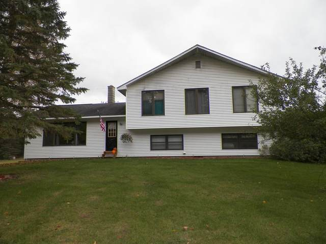 11657 E 4 1/2 Mile Rd., Luther, MI 49656 (MLS #21017336) :: JH Realty Partners