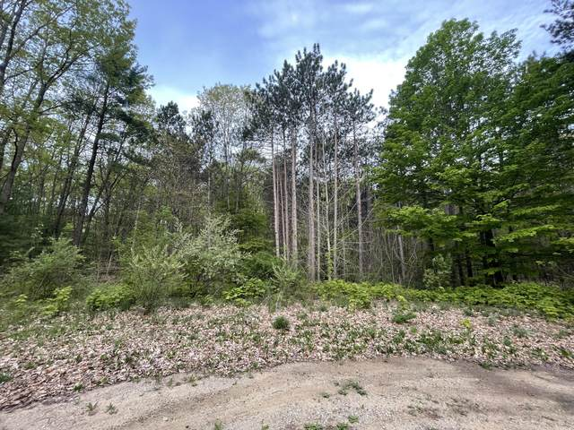 03330 Cr 687, South Haven, MI 49090 (MLS #21017888) :: JH Realty Partners