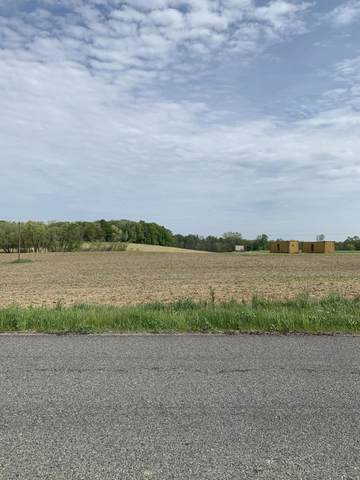 VL Buffalo Road, Buchanan, MI 49107 (MLS #21018265) :: CENTURY 21 C. Howard