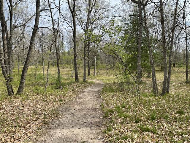 7378 W 10 1/2 Mile Road, Irons, MI 49644 (MLS #21018635) :: Ginger Baxter Group