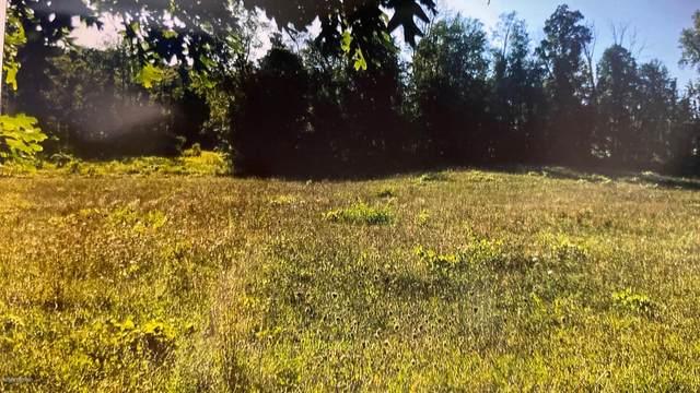 8296 Scottdale Road, Berrien Springs, MI 49103 (MLS #21018706) :: Ginger Baxter Group