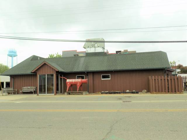 8906 1st Street, Baroda, MI 49101 (MLS #21018866) :: Deb Stevenson Group - Greenridge Realty