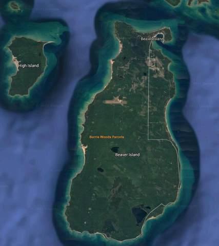 TBD Burris Court Burris Woods Pa, Beaver Island, MI 49782 (MLS #21019415) :: Sold by Stevo Team | @Home Realty