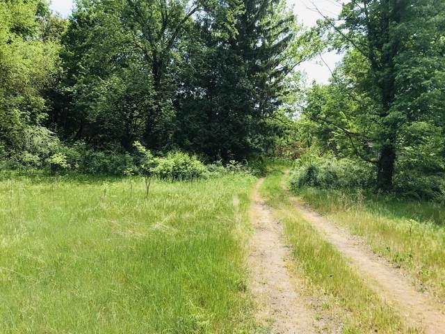 39899 W Red Arrow Highway, Paw Paw, MI 49079 (MLS #21019549) :: Ron Ekema Team
