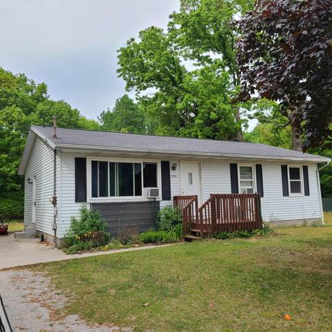 11563 Lincoln Street, Grand Haven, MI 49417 (MLS #21019559) :: JH Realty Partners
