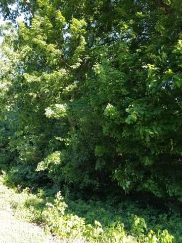 Lot 24 Talon Drive, Mendon, MI 49072 (MLS #21019926) :: BlueWest Properties