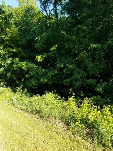 Lot 25 Talon Drive, Mendon, MI 49072 (MLS #21019927) :: BlueWest Properties