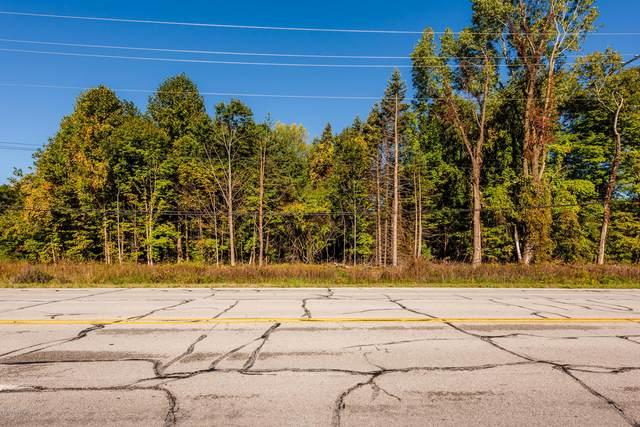 0a Red Arrow Highway, Bridgman, MI 49106 (MLS #21020162) :: Your Kzoo Agents