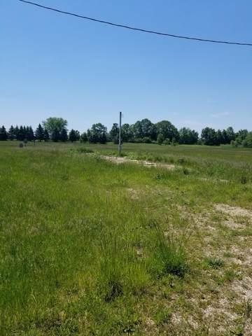 9049-9050 Willow Lane, Evart, MI 49631 (MLS #21020617) :: BlueWest Properties