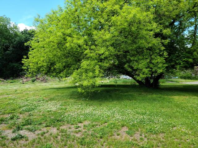 Farm Lane, Coldwater, MI 49036 (MLS #21021024) :: JH Realty Partners