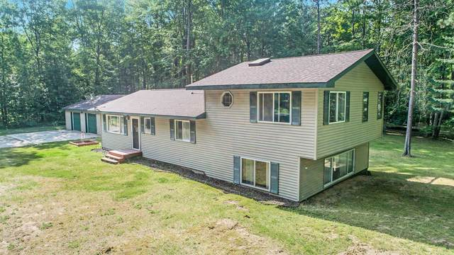 7919 E 5 Mile Road, Luther, MI 49656 (MLS #21021611) :: JH Realty Partners