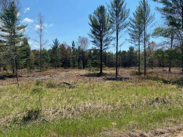 Treml Rd Parcel C-2, Free Soil, MI 49411 (MLS #21021988) :: Deb Stevenson Group - Greenridge Realty