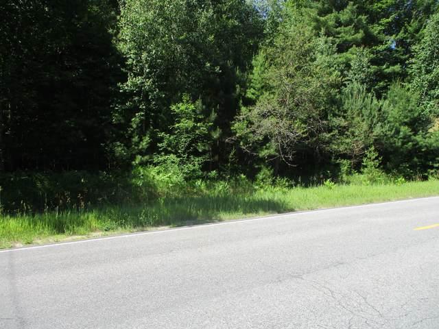 Norconk Road, Bear Lake, MI 49614 (MLS #21022097) :: Ron Ekema Team