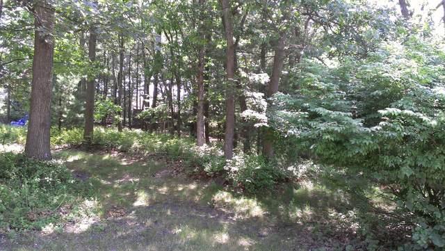 E Stark Road, Free Soil, MI 49411 (MLS #21022148) :: Deb Stevenson Group - Greenridge Realty