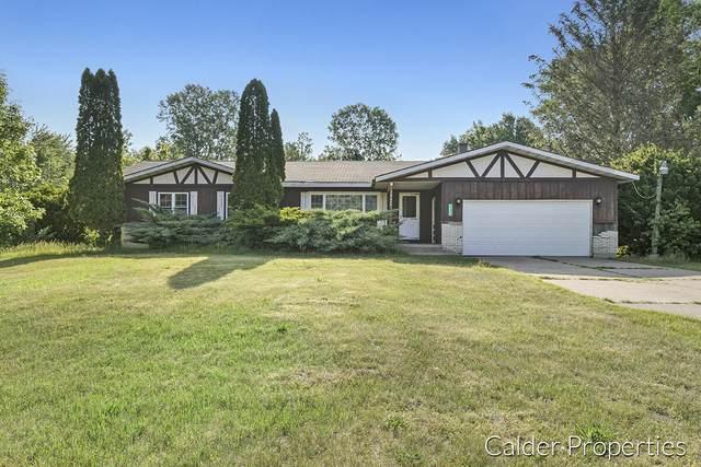 16600 Pine Lake Avenue NE, Sand Lake, MI 49343 (MLS #21022315) :: JH Realty Partners