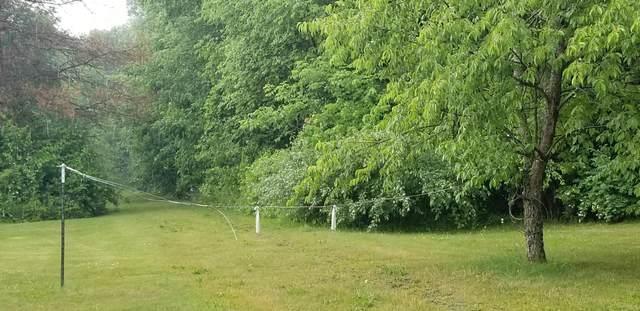 M-66, East Leroy, MI 49051 (MLS #21022316) :: Deb Stevenson Group - Greenridge Realty