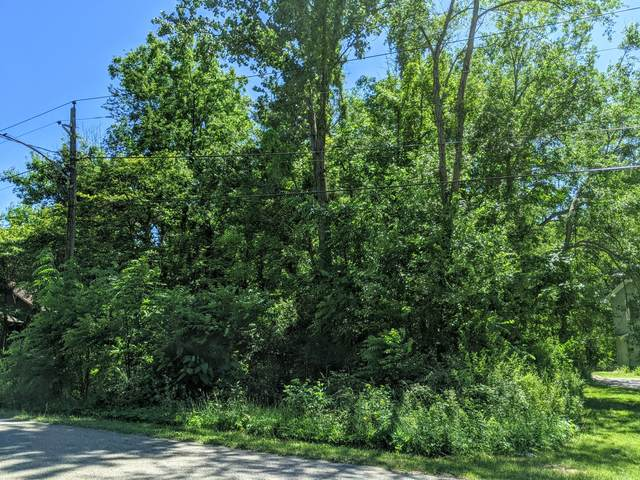 Black River Road, Bangor, MI 49013 (MLS #21022516) :: Deb Stevenson Group - Greenridge Realty