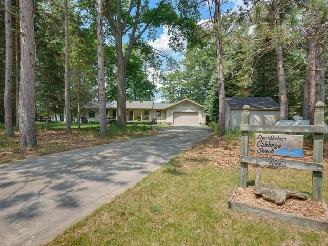 6251 N Big Pine Drive, Irons, MI 49644 (MLS #21022573) :: Ginger Baxter Group
