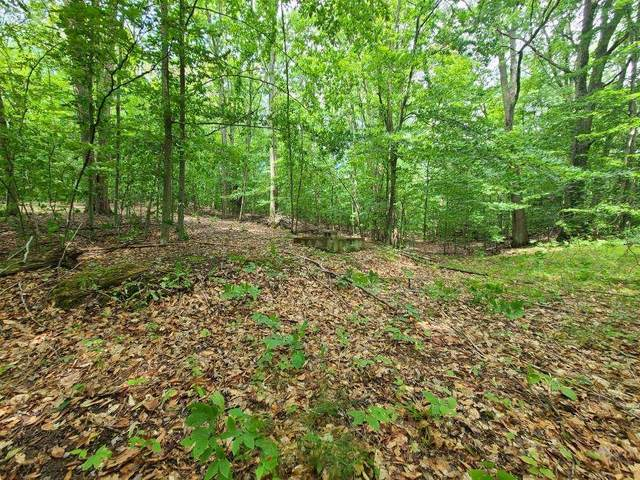 112 Logging Trail, Leroy, MI 49655 (MLS #21022656) :: JH Realty Partners