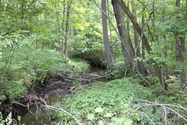 0 Mayfield Rd., Six Lakes, MI 48886 (MLS #21022678) :: Deb Stevenson Group - Greenridge Realty