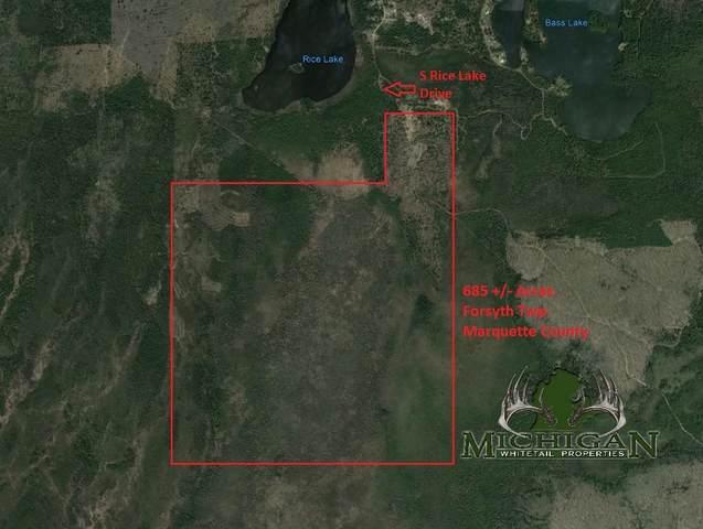 Vl S Rice Lake Drive, Gwinn, MI 49841 (MLS #21022746) :: Deb Stevenson Group - Greenridge Realty