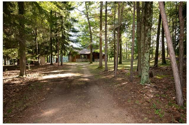9412 W 5 Mile Road, Irons, MI 49644 (MLS #21023150) :: BlueWest Properties