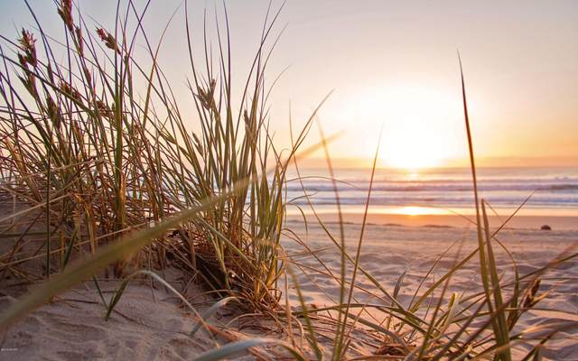 Lot 1 Saugatuck Beach Road, Saugatuck, MI 49453 (MLS #21023279) :: Deb Stevenson Group - Greenridge Realty