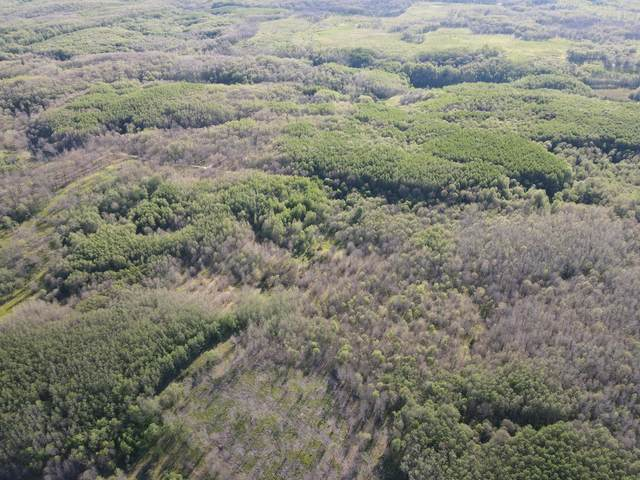 0VL Snake Trail, West Branch, MI 48661 (MLS #21023296) :: BlueWest Properties