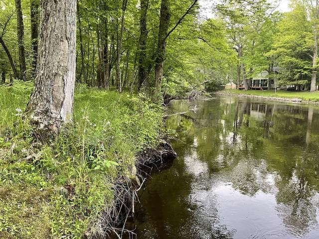 196th Road, Walkerville, MI 49459 (MLS #21023940) :: BlueWest Properties