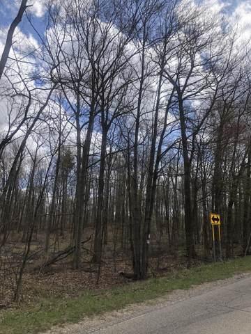 Parcel D-2 Hillman Rd, Lakeview, MI 48850 (MLS #21025097) :: Deb Stevenson Group - Greenridge Realty