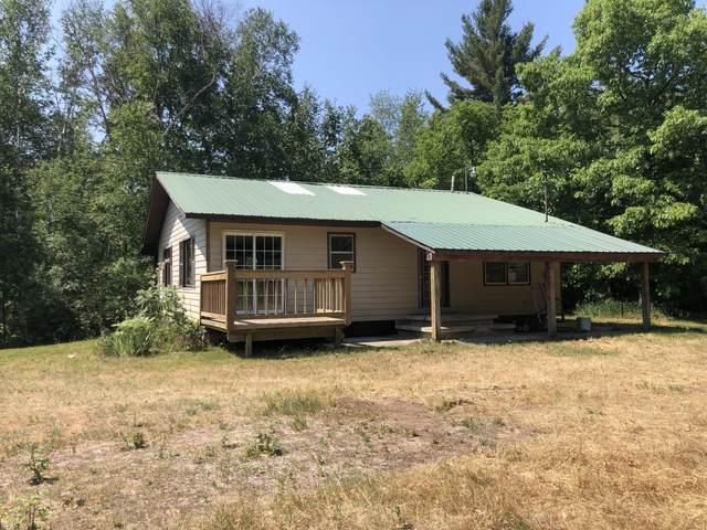 4500 Norman Road, Arcadia, MI 49613 (MLS #21025188) :: Deb Stevenson Group - Greenridge Realty