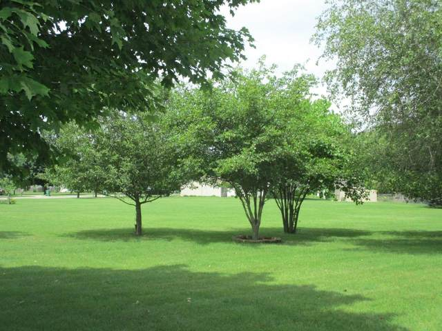 Anthony Drive, Centreville, MI 49032 (MLS #21025211) :: JH Realty Partners